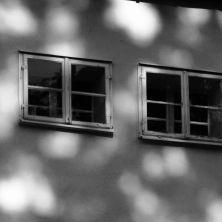 Schattenträume_Auswahl055