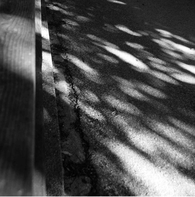 Schattenträume_Auswahl058