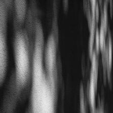 Schattenträume_Auswahl059