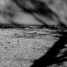 Schattenträume_Auswahl004