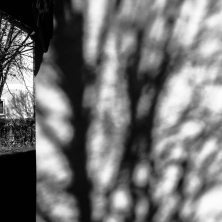unbenannte Fotosession-02580